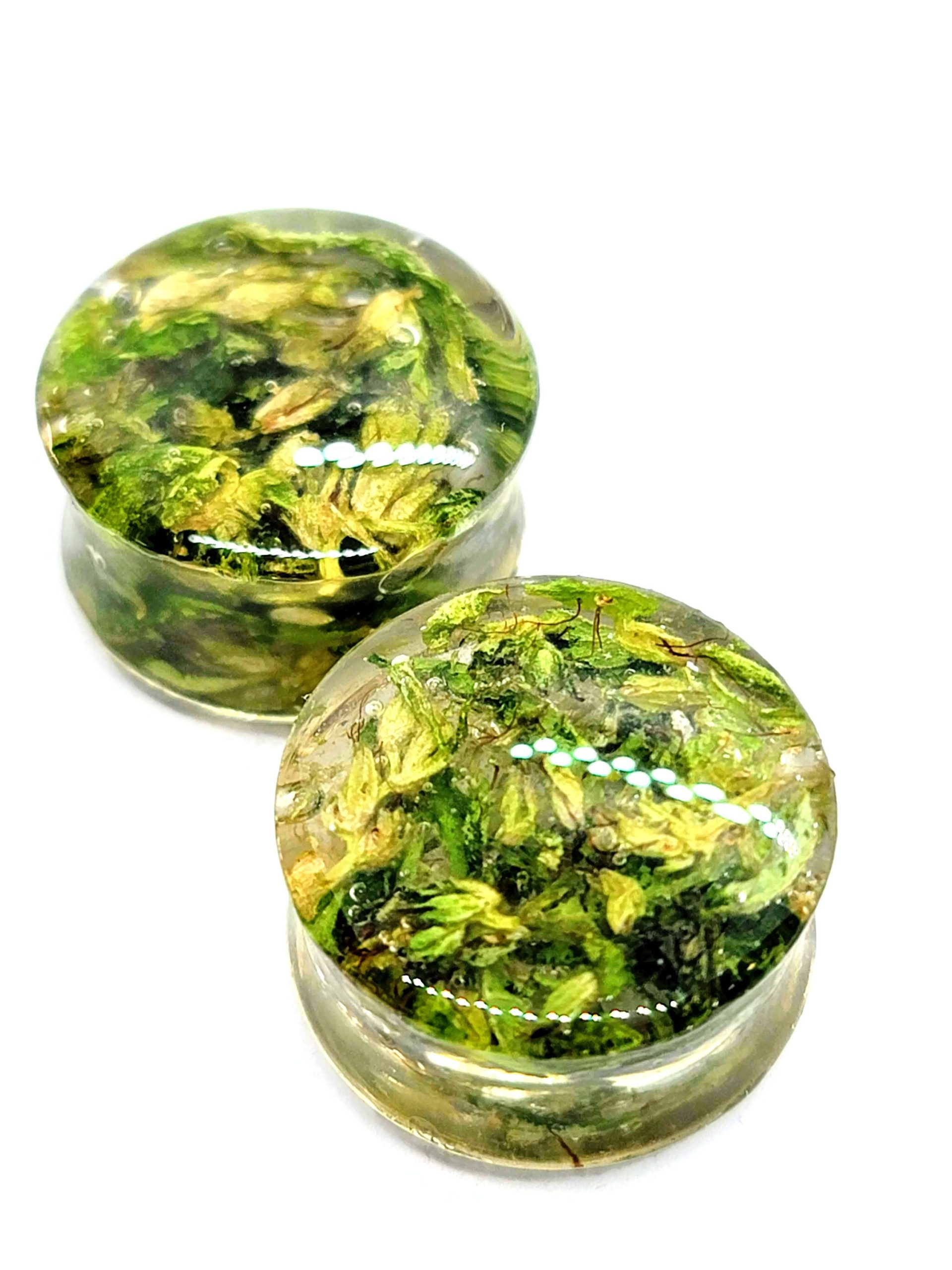 Nug Plugz – 8mm Real Cannabis Ear Plugs – Double Flare – Clear